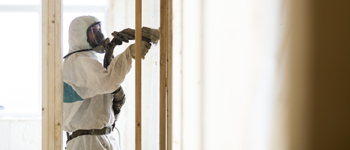 Insulation services and more